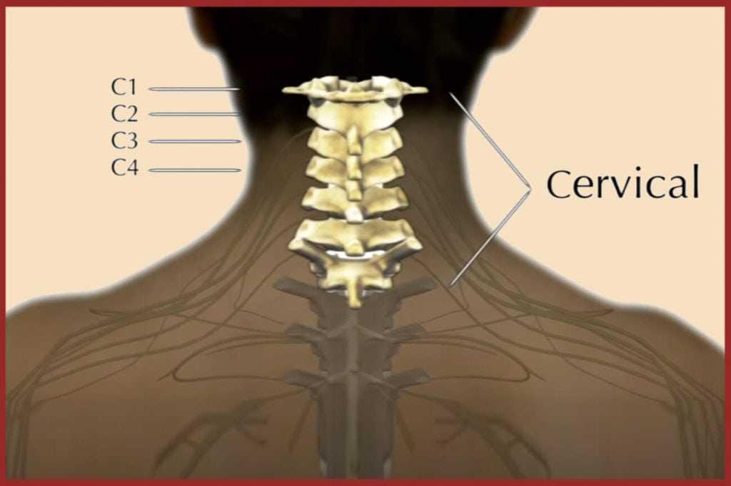Cervical Surgery