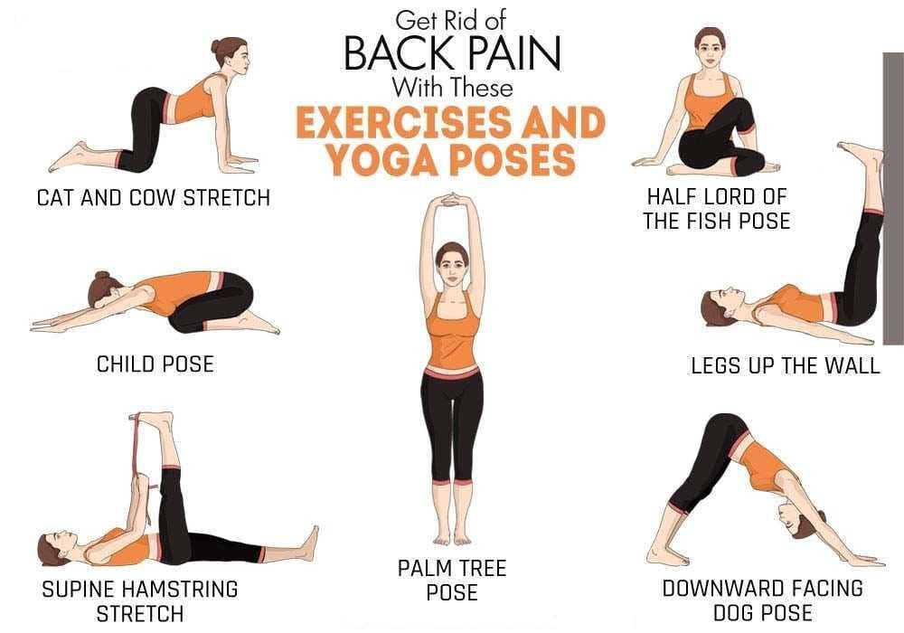 back pain yoga poses