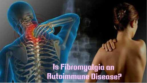 Photo of Is Fibromyalgia An Autoimmune Disease?