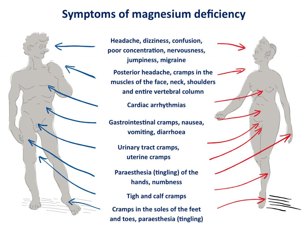Symptoms of mahnesium deficiency