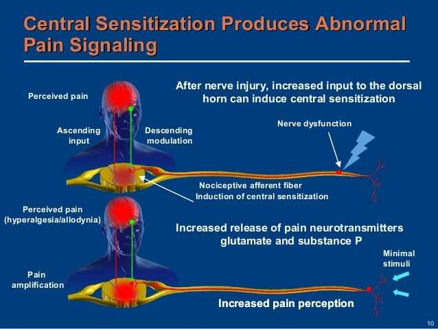 central sensitization produces abnormal pain signaling