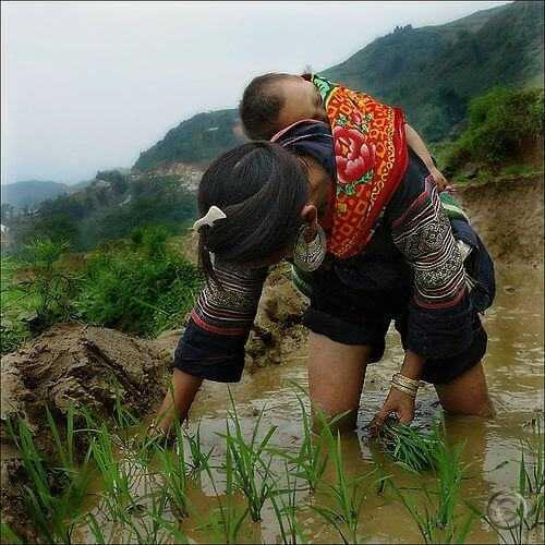 nepal women baby on your back