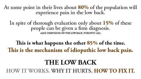Photo of Chronic Low Back Pain (CLBP)