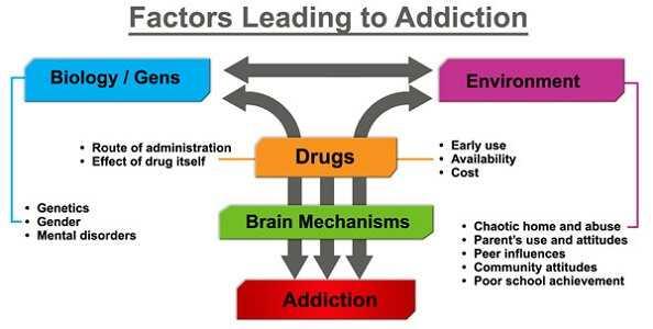 Risk Factors of Addiction