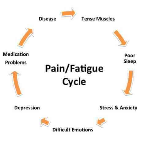 pain fatigue cycle