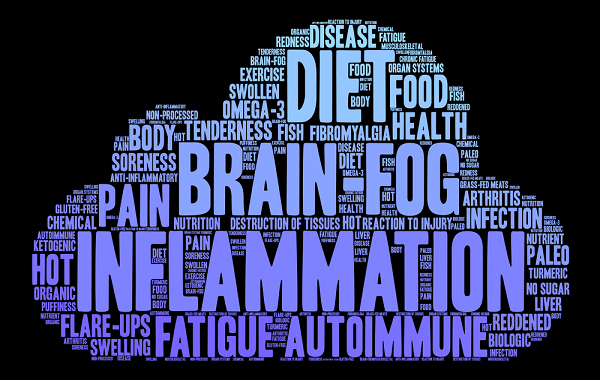 fibromyalgia and diet