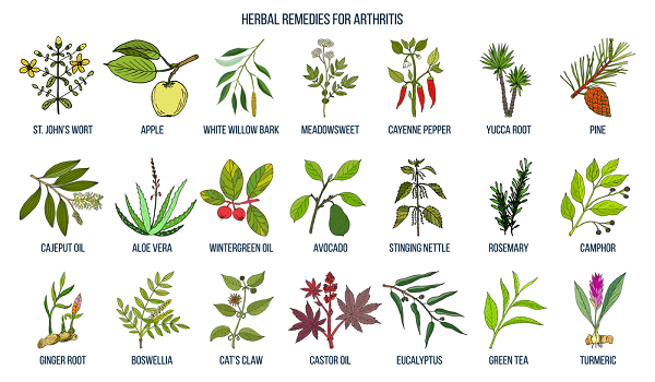 Best herbal remedies for osteoarthritis