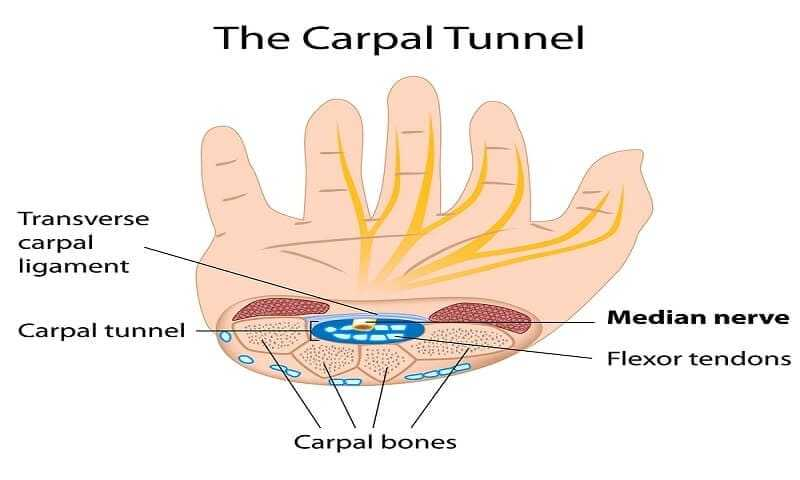 Carpal tunnel syndrome tests