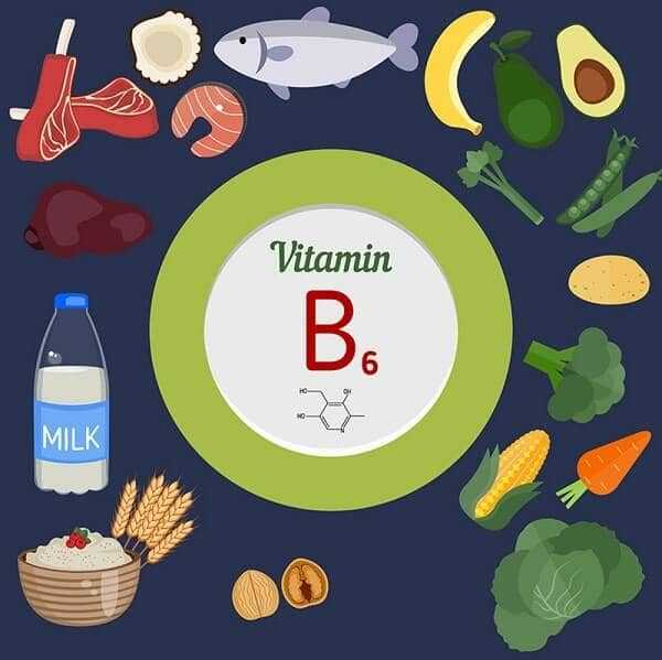 Healthy lifestyle and diet concept