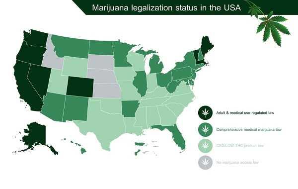 infographic marijuana legalization status in the united states