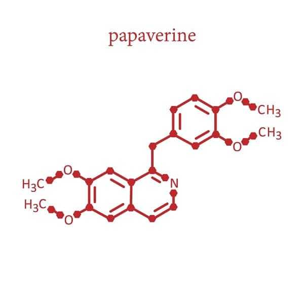 papaverine