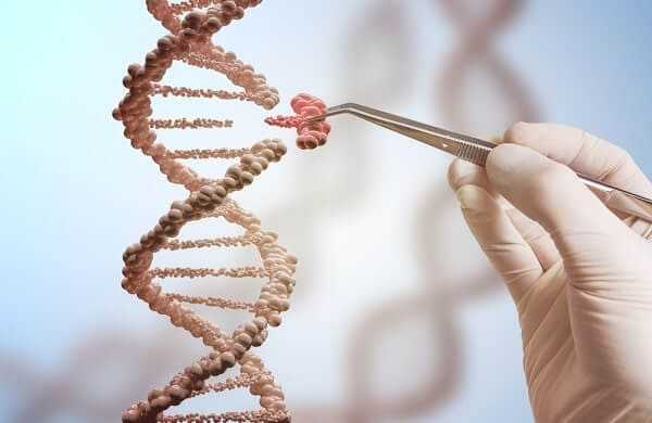 Genetic engineering and gene manipulation