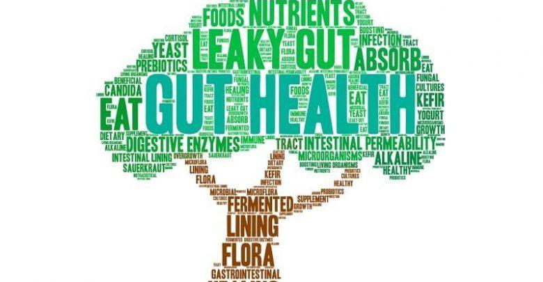 Gout Treatments in Alternative Medicine