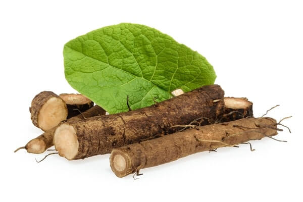 burdock roots for rheumatoid arthritis