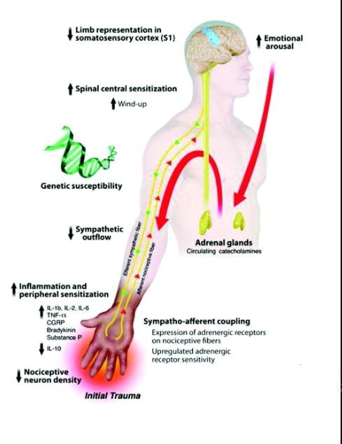 oral corticosteroids