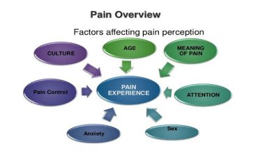 pain overview