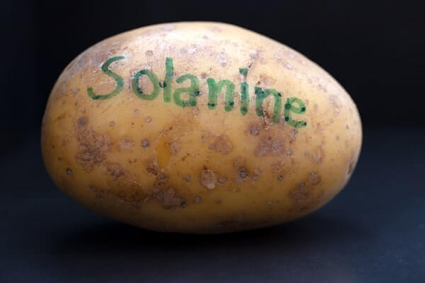 Potato and solanine