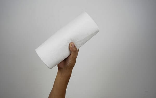 Cropped hand holding roll of tissue