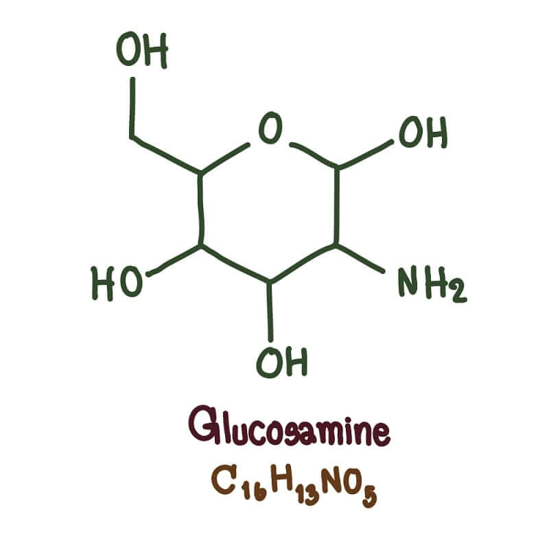 Glucosamine is most often used to treat symptoms of bone and joint disorders