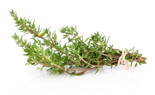 Thyme for endometriosis