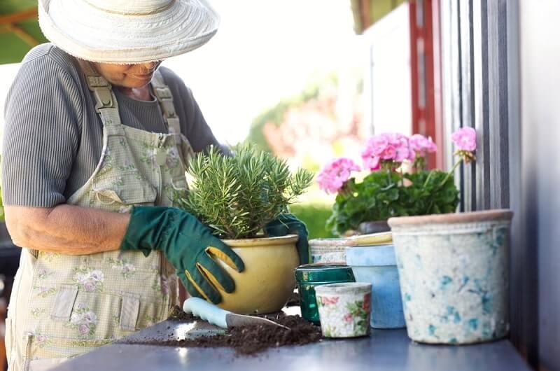 alzheimer's patient doing gardening